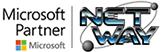Netway Logo